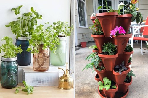 24 Things You'll Probably Want If You Wish You Could Grow Herbs At Home