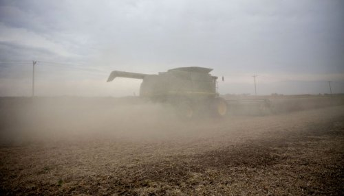 Crop Rally Seen Powering On as Buyers Shrug Off High Prices