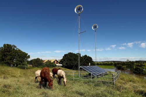 In a World of Big Wind, There's Still a Place for Tiny Turbines