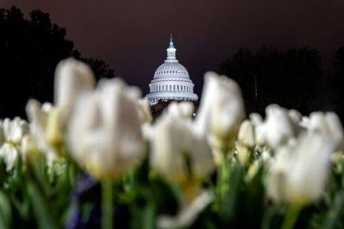 Congress to Tackle Biden's Agenda