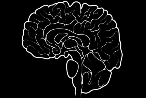 You Can Train Your Brain for Trading