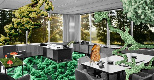 To Make a Building Healthier, Stop Sanitizing Everything