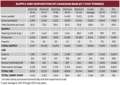 Feed barley price outlook
