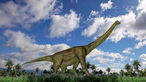 África do Sul abriga o maior cemitério de fósseis de dinossauros do mundo