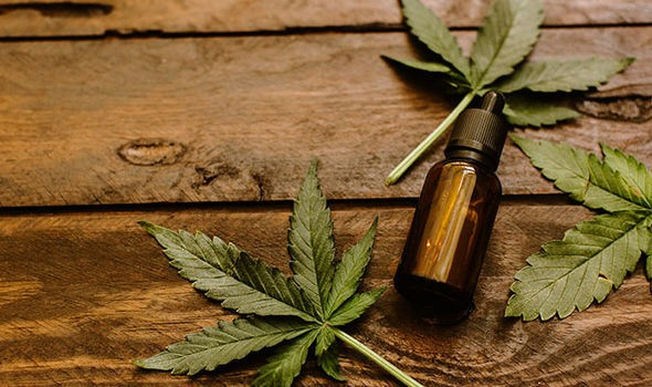 Obtaining An Access to Cannabis for Medical Purposes Regulation (ACMPR) License - Cannabis Listings