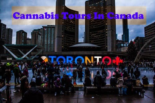 Cannabis Tours in Canada