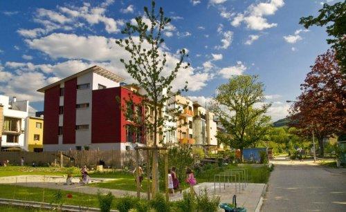 Grüne Baustoffe: Nachhaltig ins Eigenheim