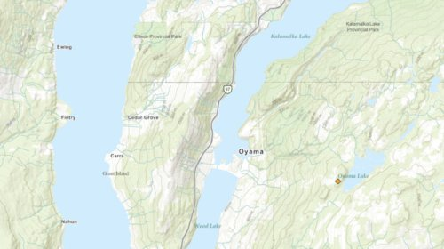 New wildfire near Oyama Lake not expected to grow