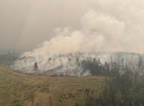 Sparks Lake fire now estimated 65,484 ha (Kamloops)