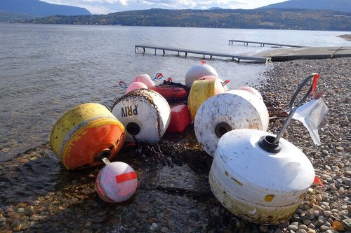 You can't install docks or buoys in Shuswap area lakes without asking first - Salmon Arm News