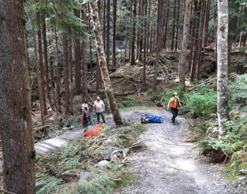 North Shore Rescue pulls unconscious 73-year-old e-biker from the bush - BC News