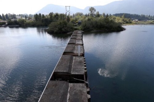 Catalyst Paper seeks lower Cowichan River flow to save water for pulp mill (Business)