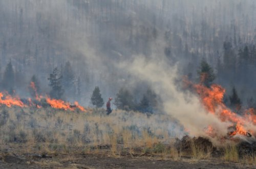 Tremont Creek wildfire now mapped at 27,624 hectares, continues to move northeast, BC Wildfire Service says (Kamloops)