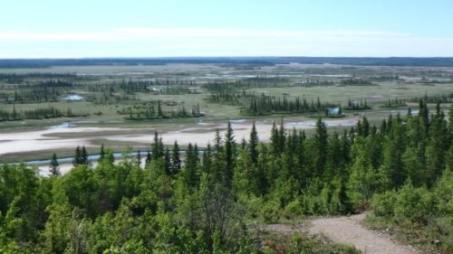 Report outlines 'violent, fraught' history of Wood Buffalo National Park   CBC News