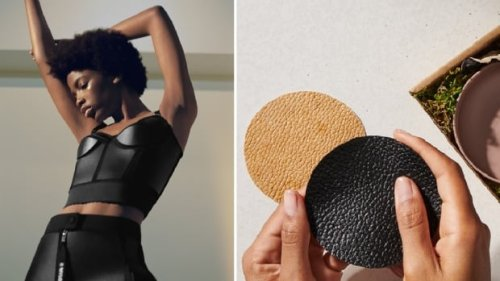 Made of fungi, mycelium hits market as green substitute for leather, plastic   CBC News
