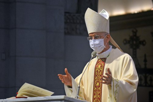 Catholic universities must lead, empower students to truth, says Nuncio