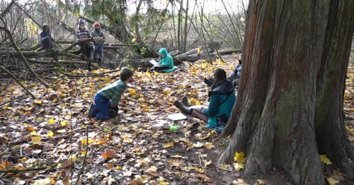 Schools without walls: Lessons in outdoor education