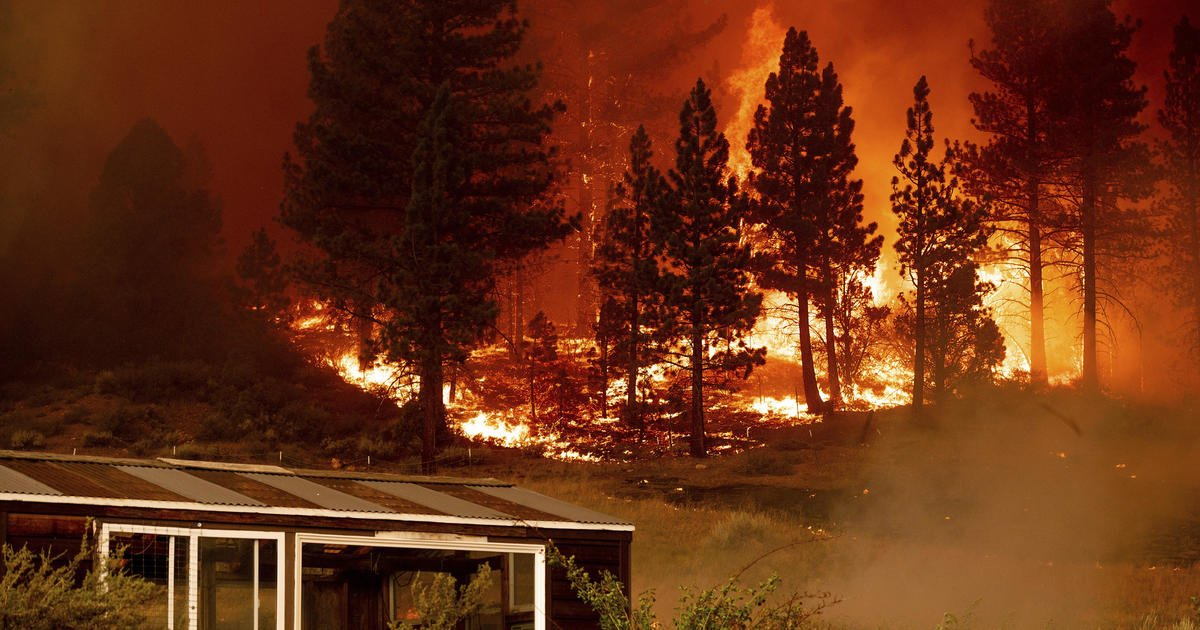 These are the country's 5 largest burning wildfires and what we know about them