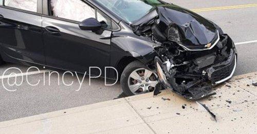 Flying cicada caused driver to crash car into pole, Cincinnati police say