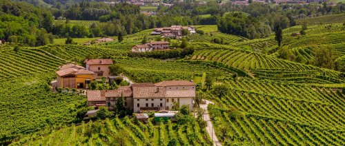 Prosecco Wine Region Guide » Italian Wine Regions » CellarTours