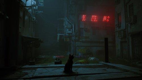 Stray – Die süße Cyberpunk-Katze schnurrt dieses Jahr noch nicht, bringt uns aber neues Gameplay