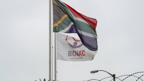 South Africa's Biovac Strikes Deal to Make COVID-19 Vaccine