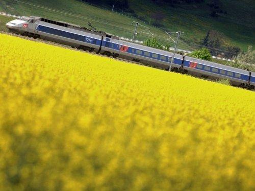 Et si les trains roulaient au colza? La SNCF prend le pari sur la ligne Paris-Granville