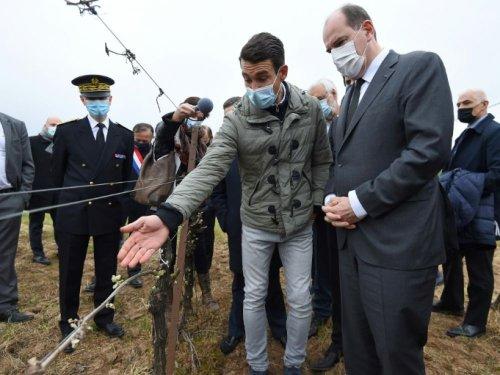 Gel: Castex annonce un fonds d'un milliard d'euros pour les agriculteurs