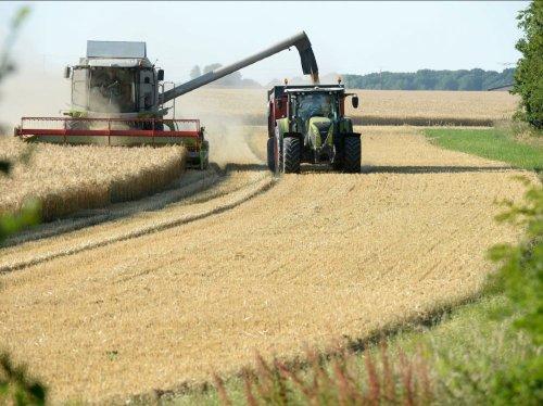 120.000 emplois créés en agriculture: la déclaration d'Eric Piolle est-elle vraiment crédible?