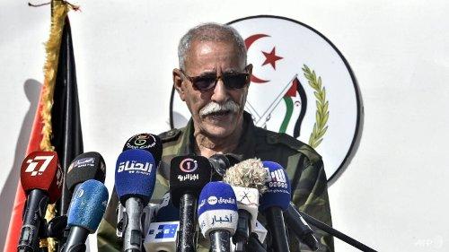 Polisario chief back in Algeria after Spain-Morocco row