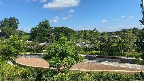 Inland ash scattering garden at Choa Chu Kang Cemetery opens next week