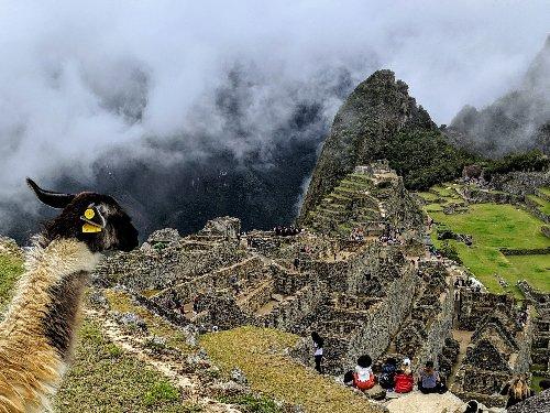 Tips About Visiting Machu Picchu, Peru