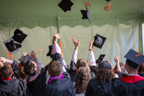 The top 20 university degrees most likely to get you a job revealed by experts