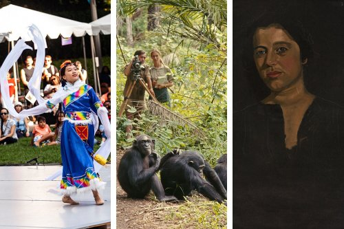 Ten Great Things to Do in May