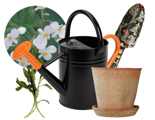 Container gardening: From an all-white moon garden to herbs that pack a punch, here are some trends for the 2021 growing season