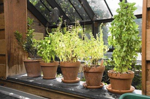 Home & Garden cover image