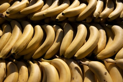 Op-ed: 5 billion bananas get thrown away each year — how reducing food waste can help solve the climate crisis