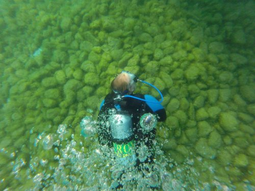 An estimated 300 trillion invasive mussels blanket Lake Michigan. Eradication may be impossible, but small-scale removal efforts could be the answer