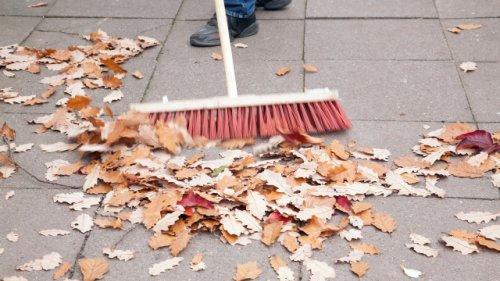 Streit ums Herbstlaub: Dann haben Sie Anspruch auf eine Laubrente