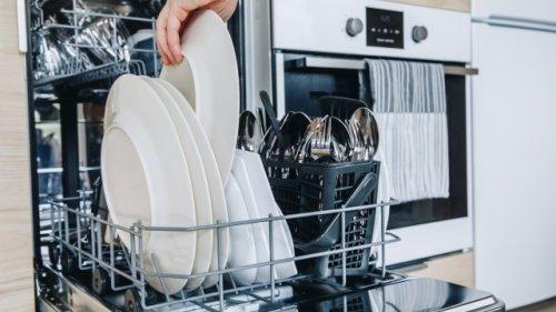 Nach Programm-Ende: Soll man die Spülmaschine gleich öffnen oder geschlossen halten?