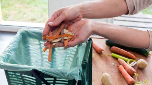 Mit einfachen Hausmitteln: So verhindern Sie, dass Ihr Mülleimer im Sommer stinkt