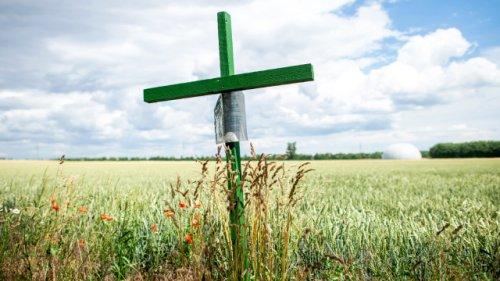 Wichtige Botschaft: Das bedeuten Grüne Kreuze am Straßenrand