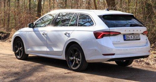 200-PS-Kombi mit 1,2 Liter Verbrauch: Skoda bringt den Hybrid-Octavia ab 59 Euro