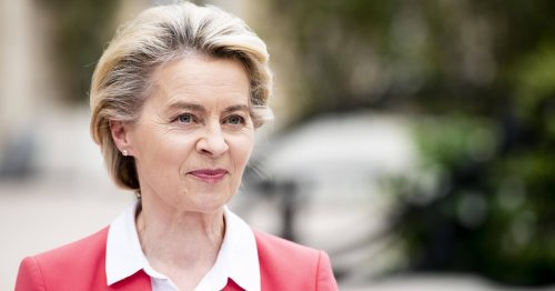 Bald keine Verbrenner, Kerosin-Steuer: So will die EU den Klimawandel stoppen