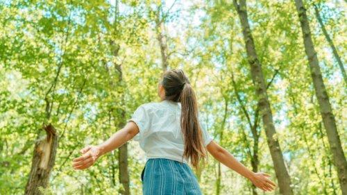 Gut zu Fuß: So viele Schritte empfehlen die Experten