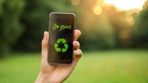 Nachhaltiger leben: 5 clevere Apps für eine grünere Lebensweise