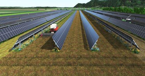 Solar frisst Bauern die Äcker weg: Österreicher haben eine geniale Idee