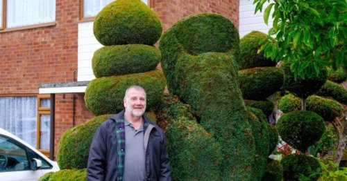 Gardener warned by police over rude hedge after neighbour complaint