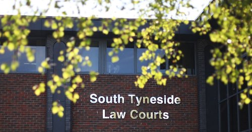 Sunderland alcoholic found with cannabis plant when police visited his home