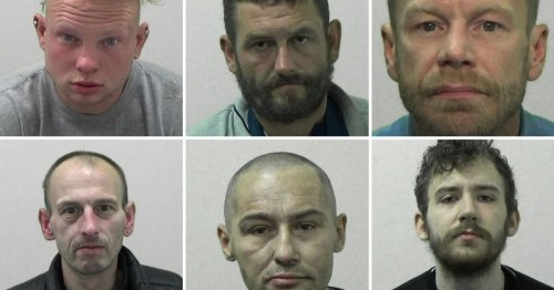 The North East's dumbest criminals - including thief who fell asleep at scene
